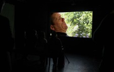 In the darkened gallery beyond the first screen, Jamie is projected in close up, shown in a domestic setting, greenery visible in the window behind him.