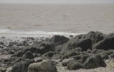 Boulders draped in seaweed and a muddy sea beyond.